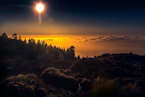 Gratis stockfoto met achtergrondlicht, backlit, berg, bomen
