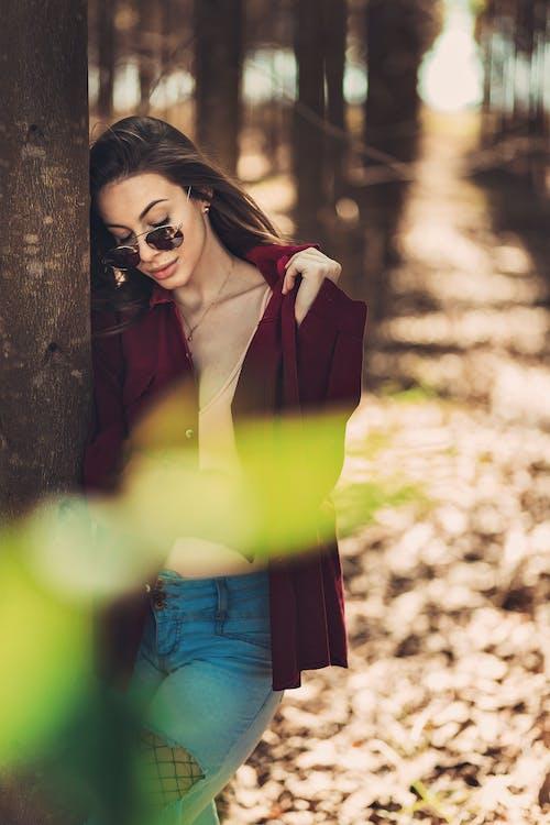 갈색 머리, 나무, 사진 촬영