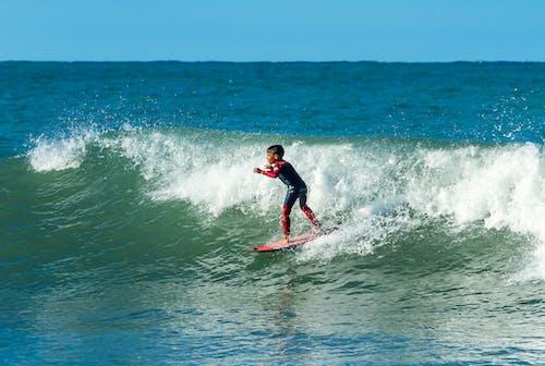 Δωρεάν στοκ φωτογραφιών με Surf, επιφάνεια, επιφάνεια νερού, Ιστιοσανίδα