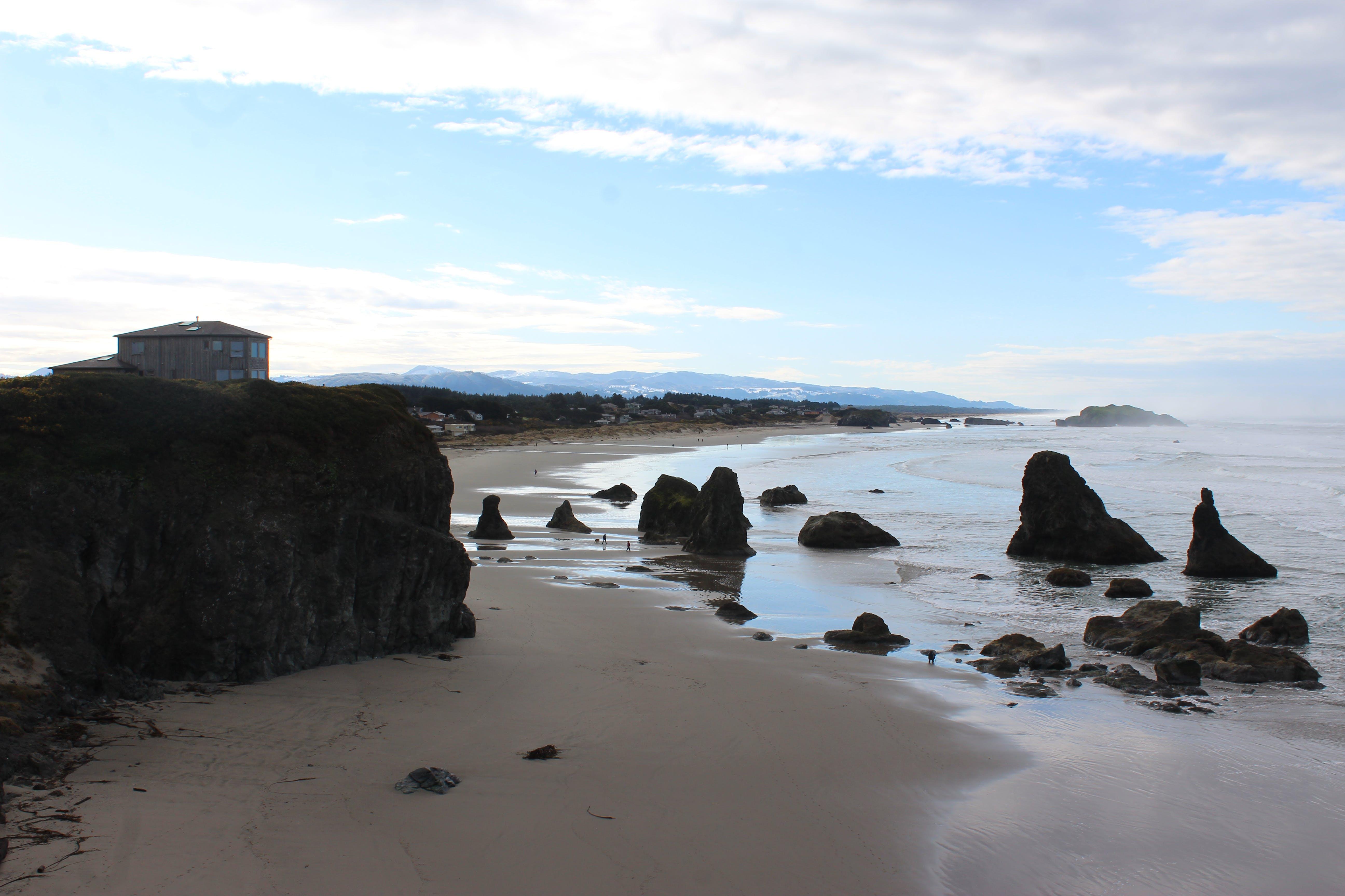 Free stock photo of oregon coast