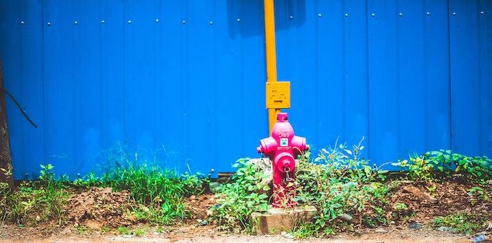 Pink Steel Water Pump Behind Blue Fence