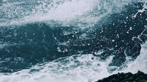 Základová fotografie zdarma na téma cákání, mávání, moře, oceán