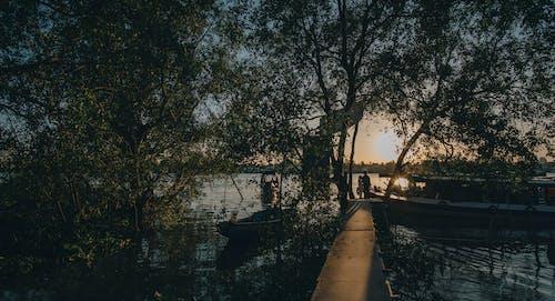 Couple Walking on Docks during Golden Hour