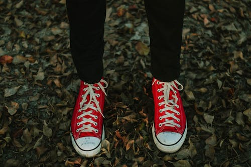 Person Wearing Red-and-white Sneakers Standing on Withered Leaves