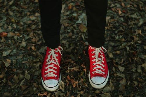 คลังภาพถ่ายฟรี ของ รองเท้าผ้าใบ, สวมใส่, แฟชั่น