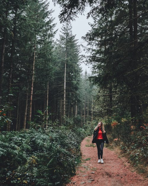 Woman Walking on Unpaved Pathway in the Middle of Forest