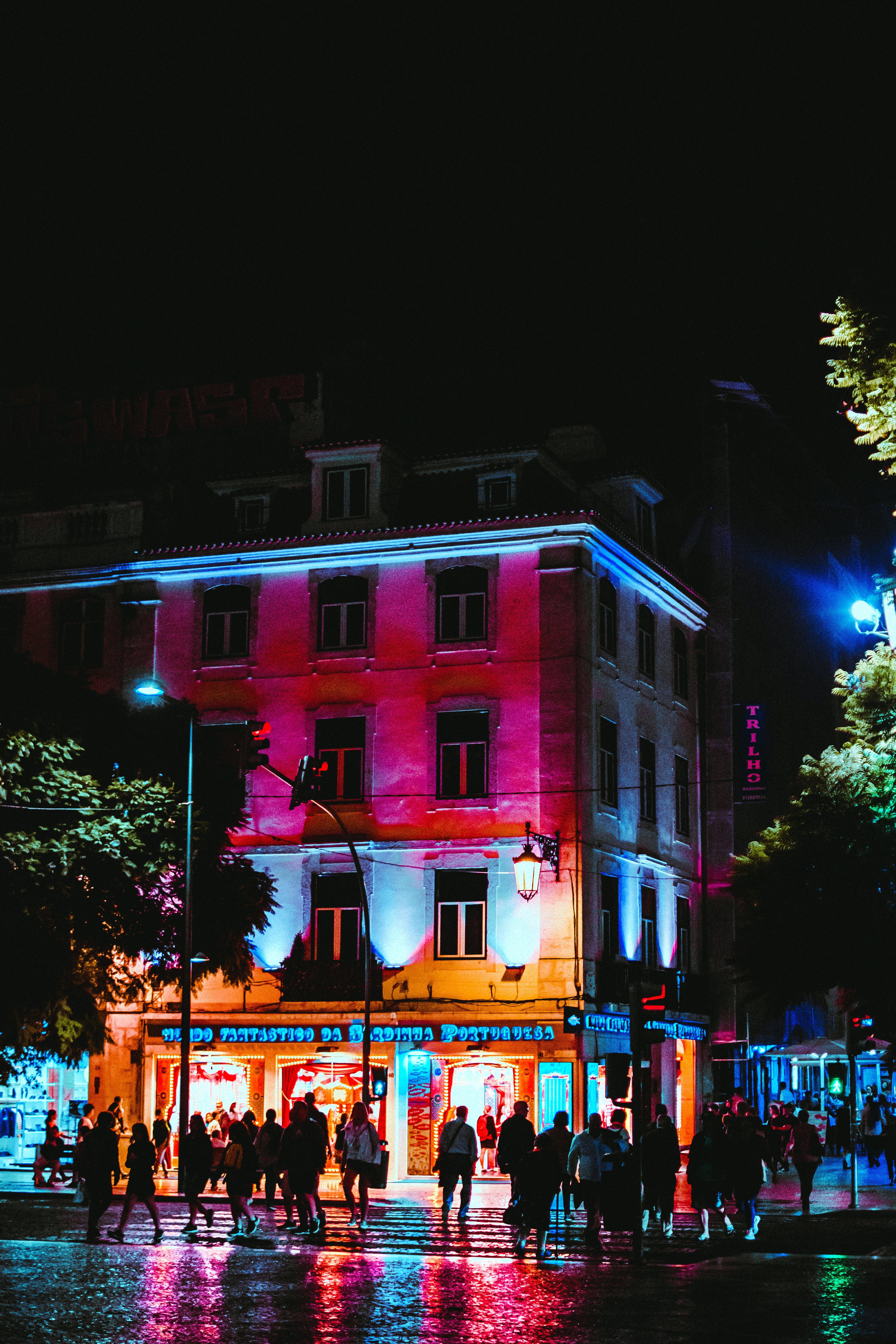 Kostenloses Stock Foto zu abend, architektur, bäume, beleuchtet