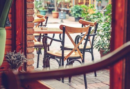 內部, 室內設計, 椅子, 玻璃窗 的 免费素材照片