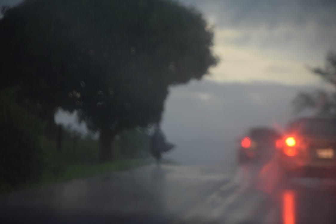 rain, road
