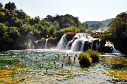 Imagine de stoc gratuită din apă, cascade, curent, natură