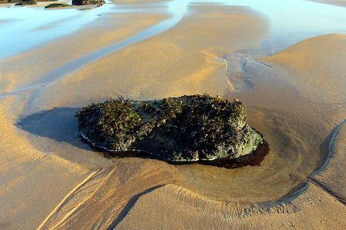 Foto d'estoc gratuïta de Escòcia, joia besson de fotografia rebel, Mar del nord, marea baixa
