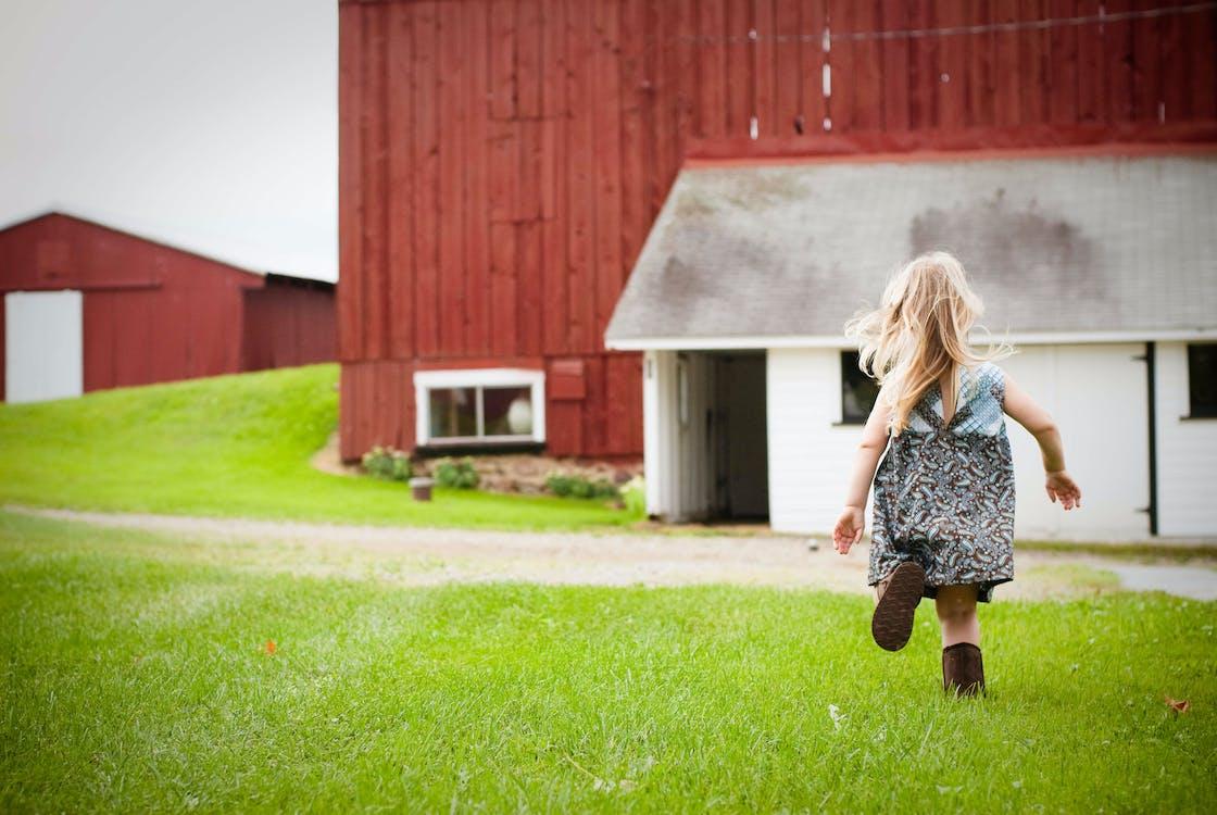 country, farm, farm living