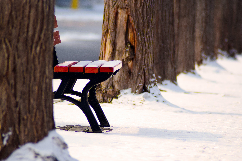 về băng, Băng ghế, ghế, gỗ