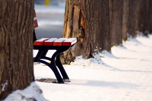 Free stock photo of cold, snow, wood, bench