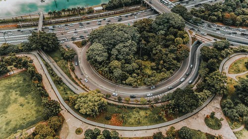 Aerial Photography of Roads and Trees