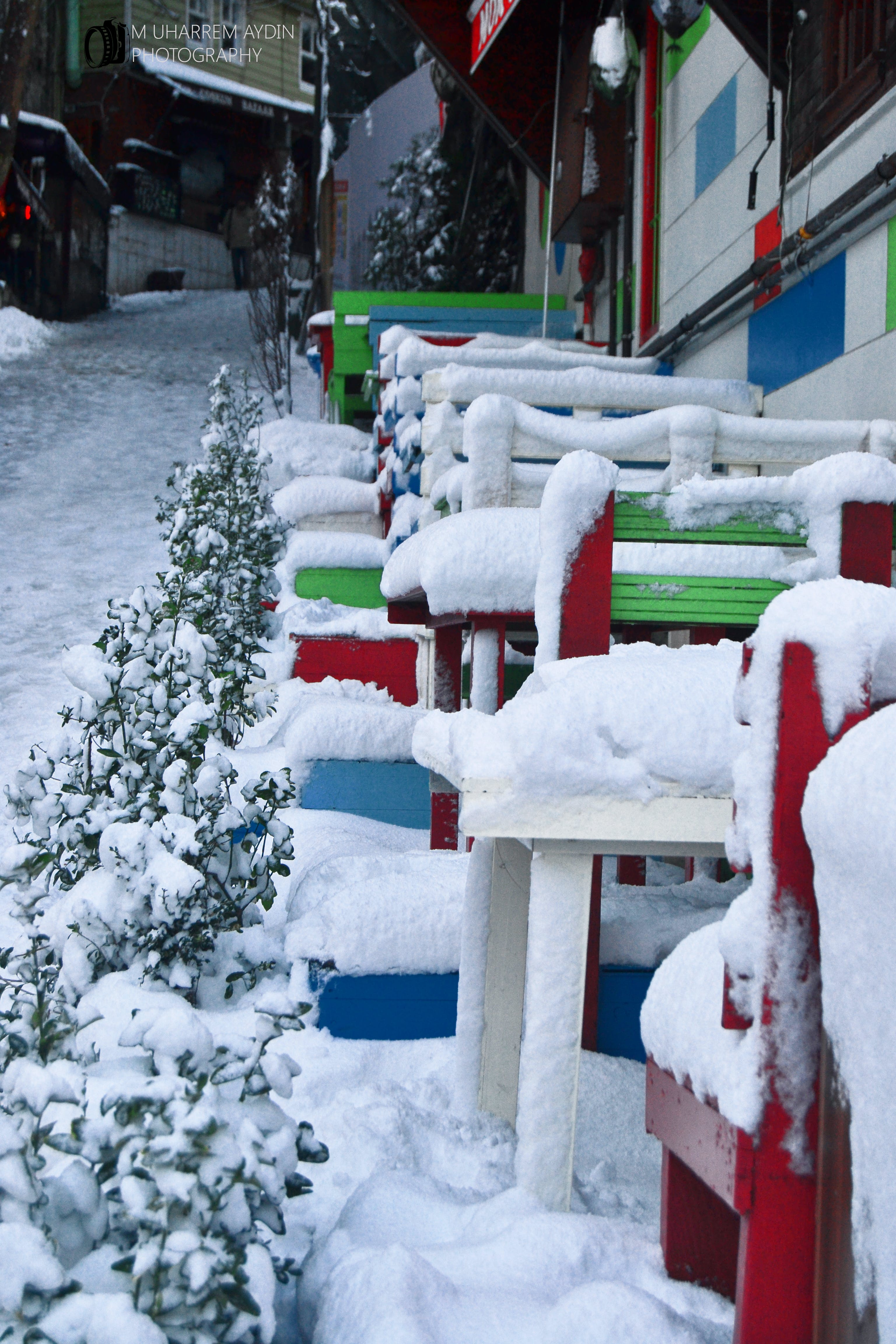 Free stock photo of #snow #color #photo #oneday