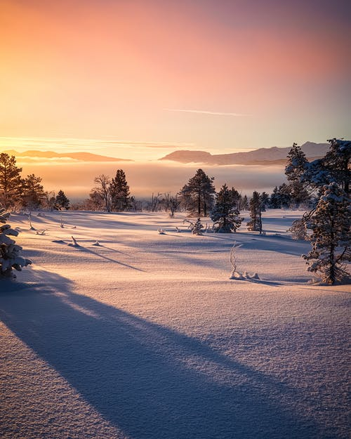 コールド, のどか, 凍る, 夕方の無料の写真素材