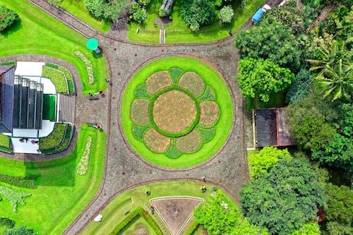 Ảnh lưu trữ miễn phí về bắn từ trên không, Indonesia, từ phía trên, vườn
