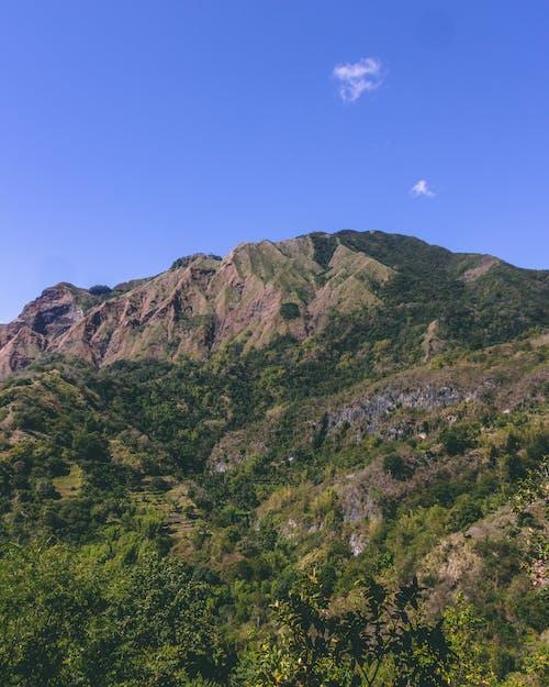 Foto d'estoc gratuïta de caminada, foto vertical, muntanya, turó