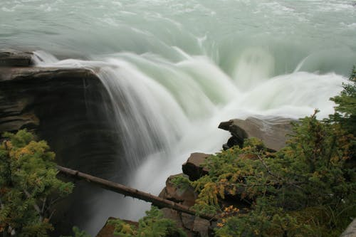 Green Trees Near the Waterfall