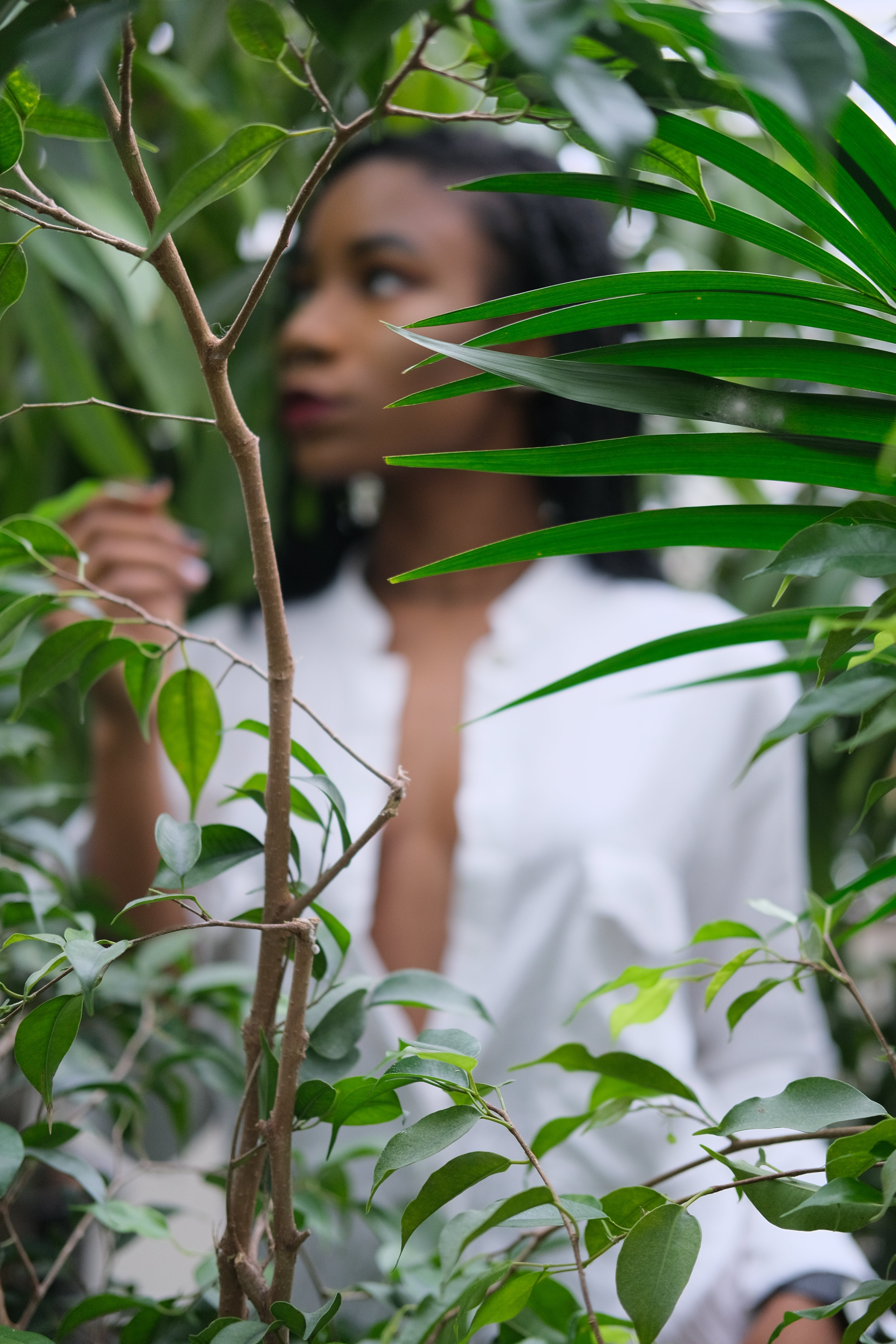Selective Focus of Green Leaf Plant Near Woman Wearing White Shirt