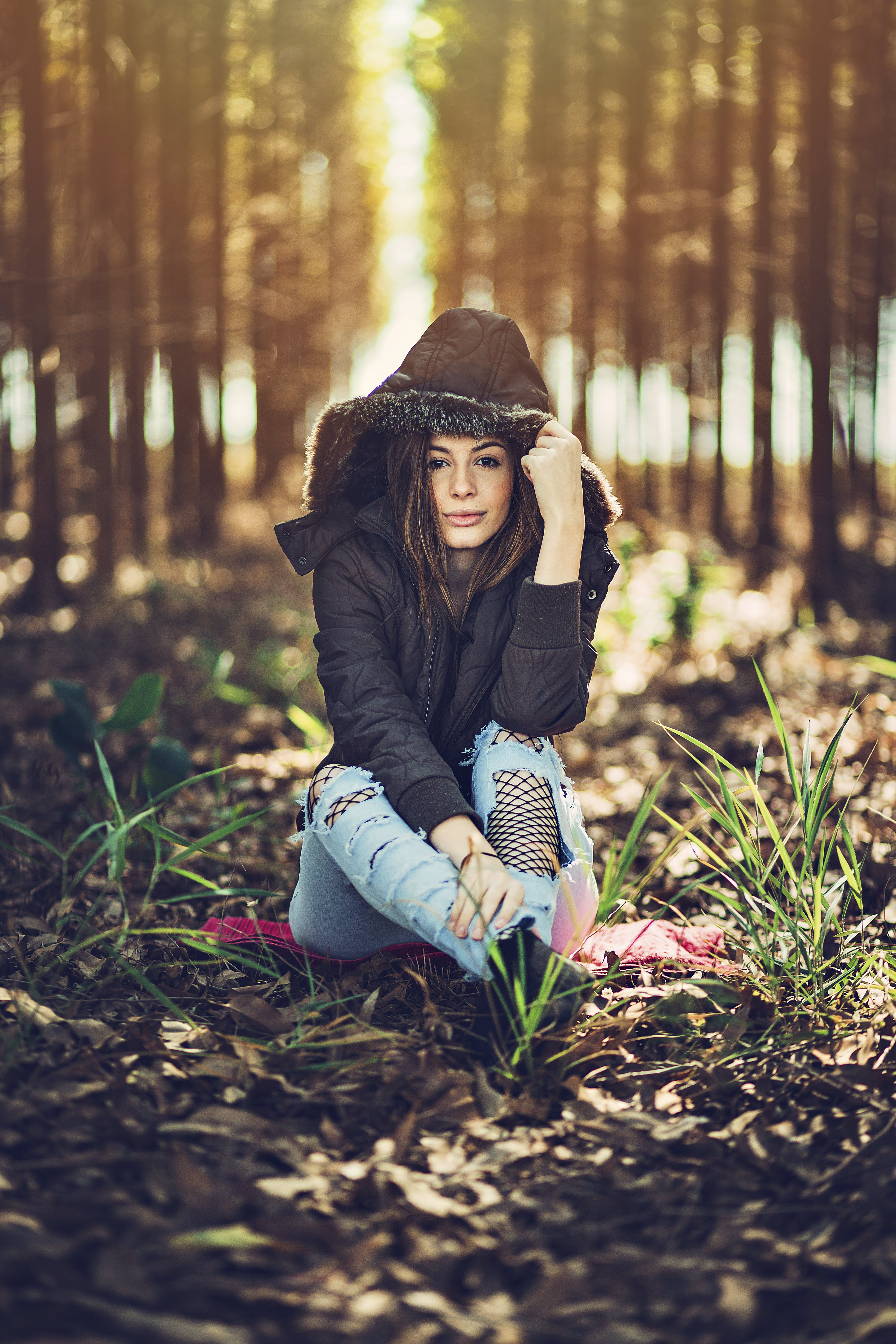 Free stock photo of beauty in nature, fashion, nature photography, photo session
