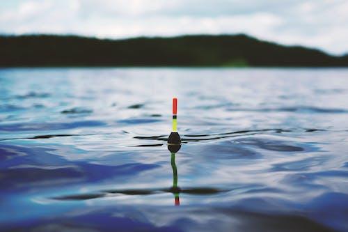 Ilmainen kuvapankkikuva tunnisteilla heijastus, hiekkaranta, kalastus, kellua
