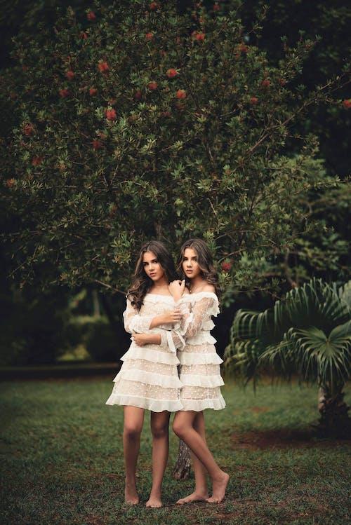 Бесплатное стоковое фото с близнецы, женщины, красивый, красота