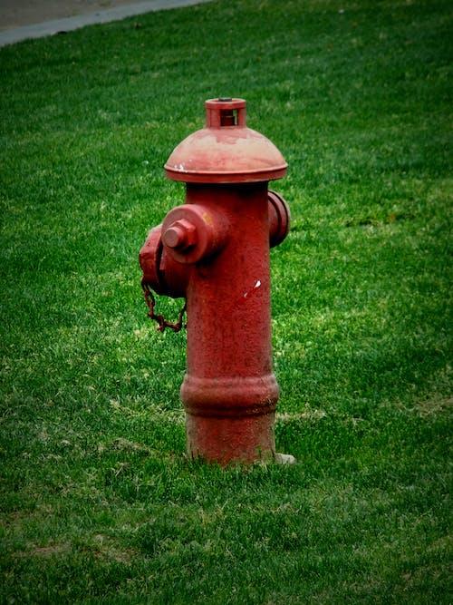 Free stock photo of hydrant