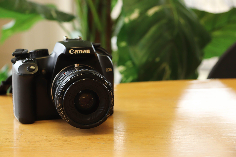 Immagine gratuita di dslr, fotocamera, fotografia