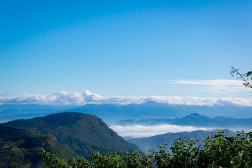 Základová fotografie zdarma na téma modrá obloha, modré hory, zamlžené