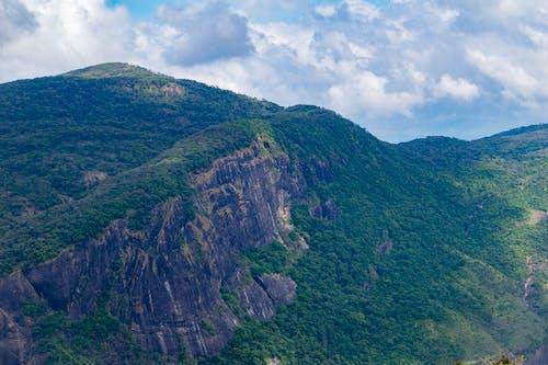 Základová fotografie zdarma na téma hora, skalisté hory