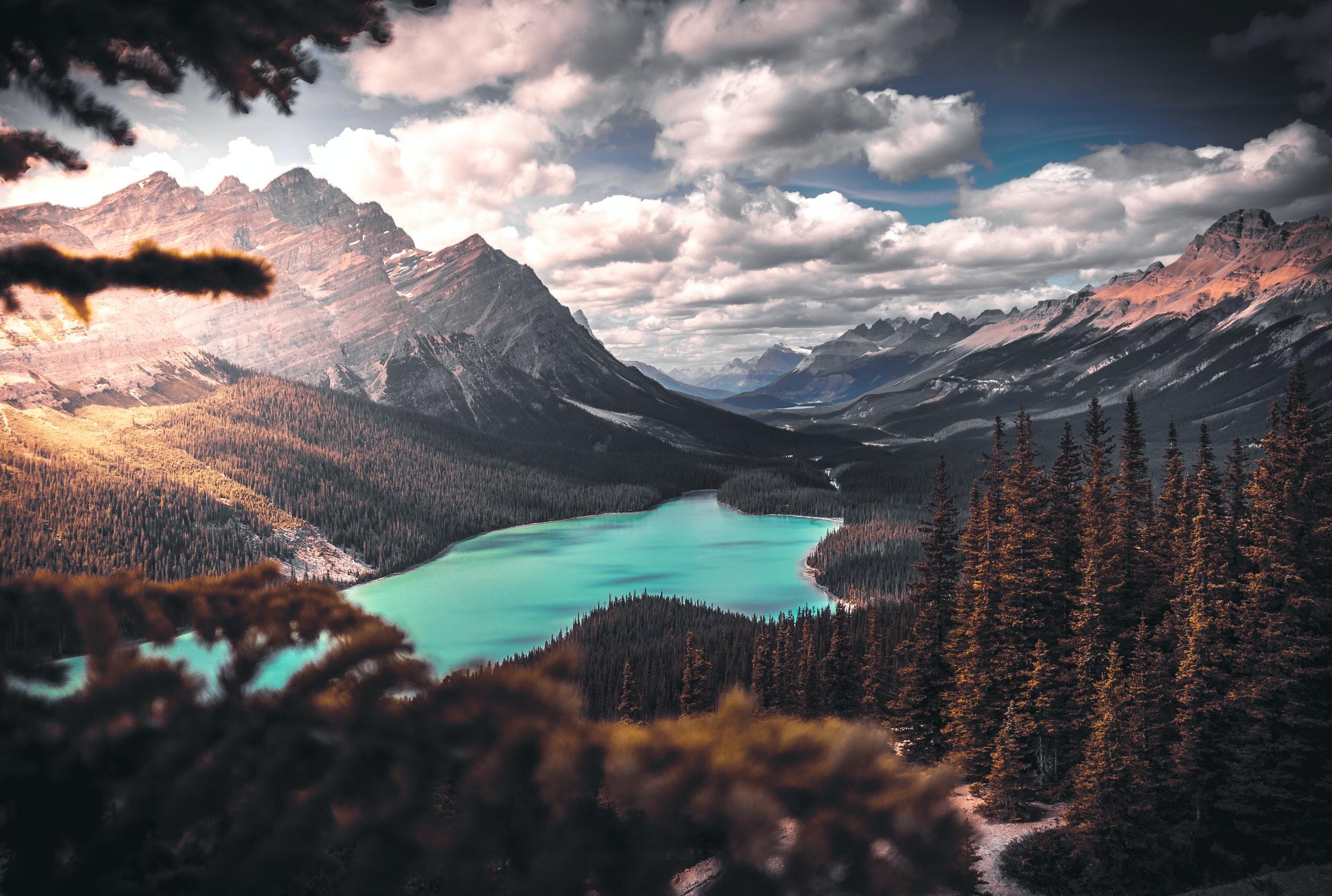 Top 20 R Wallpaper Love: Desktop Backgrounds · Pexels · Free Stock Photos