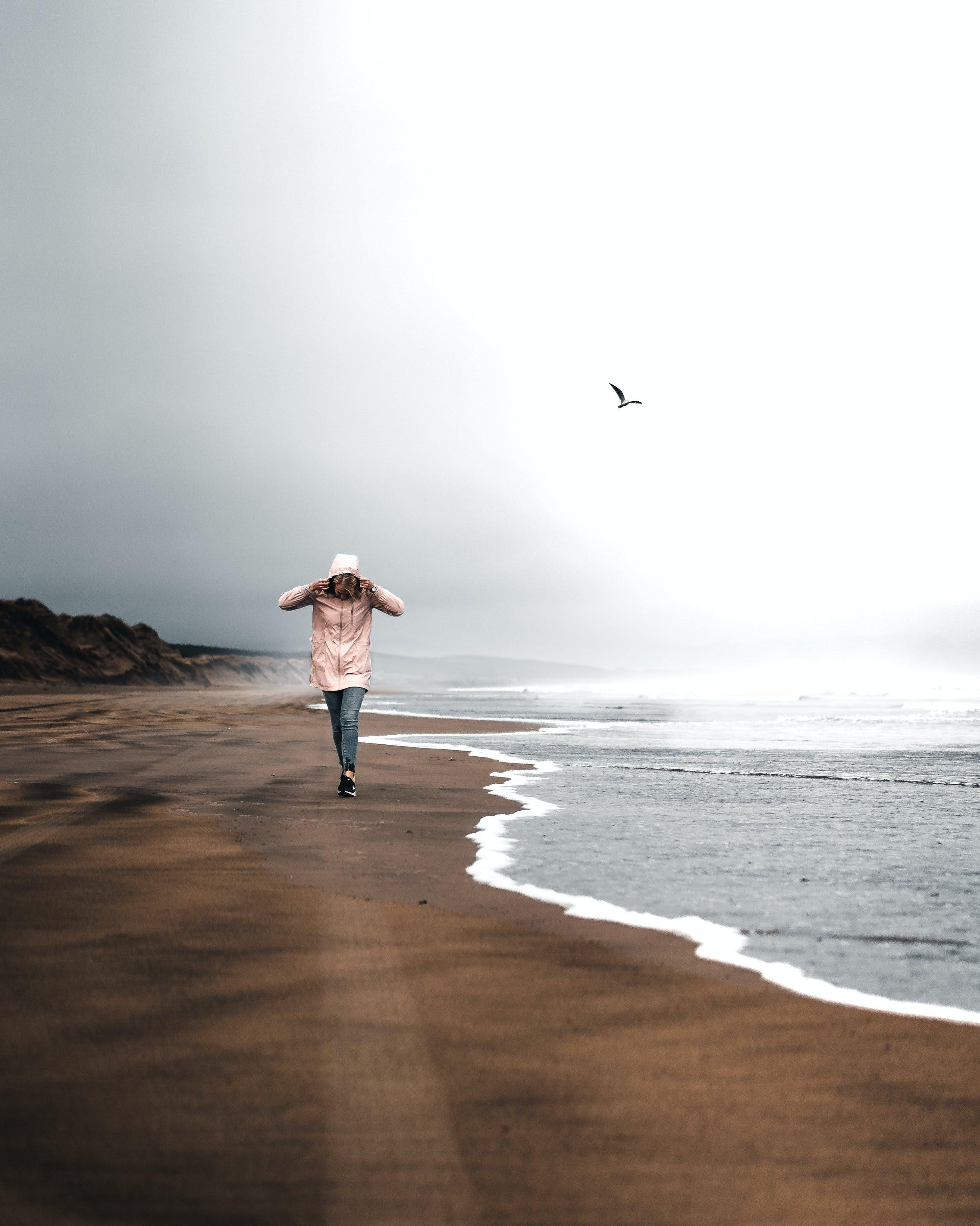 Fotobanka sbezplatnými fotkami na tému breh, chôdza, človek, denné svetlo