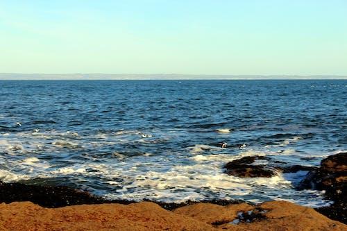 Gratis arkivbilde med blå himmel, bølger, himmel, johny rebel fotografering bathgate