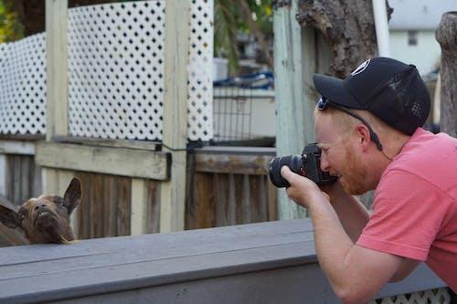 Δωρεάν στοκ φωτογραφιών με αγρόκτημα, καλλιτέχνης, φωτογράφος