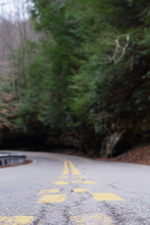 Foto profissional grátis de backroad, cênico, estrada, linhas de pintura