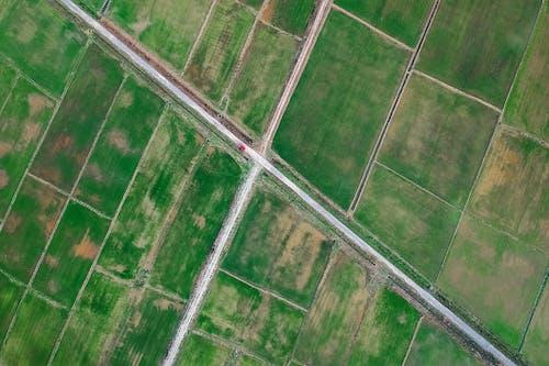 Základová fotografie zdarma na téma farma, hřiště, letecký snímek, orná půda