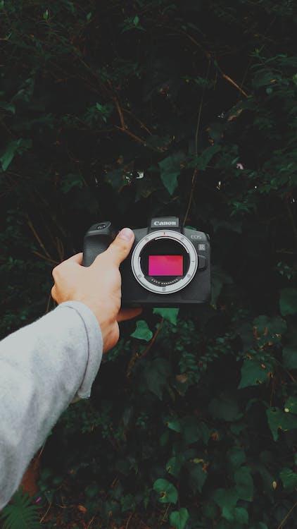 Black Canon Camera On Left Hand