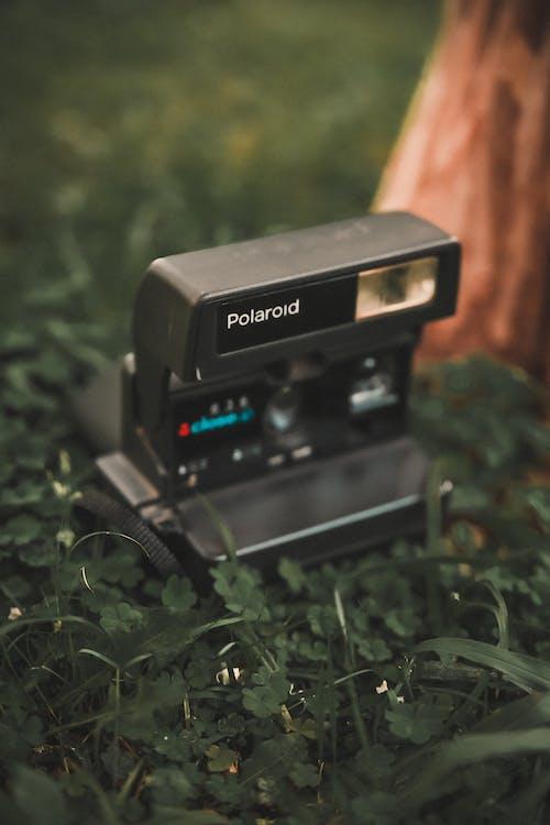 Ingyenes stockfotó fényképezőgép, fű, polaroid, polaroid fényképezőgép témában