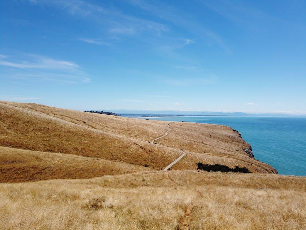 christchurch, yeni Zelanda içeren Ücretsiz stok fotoğraf