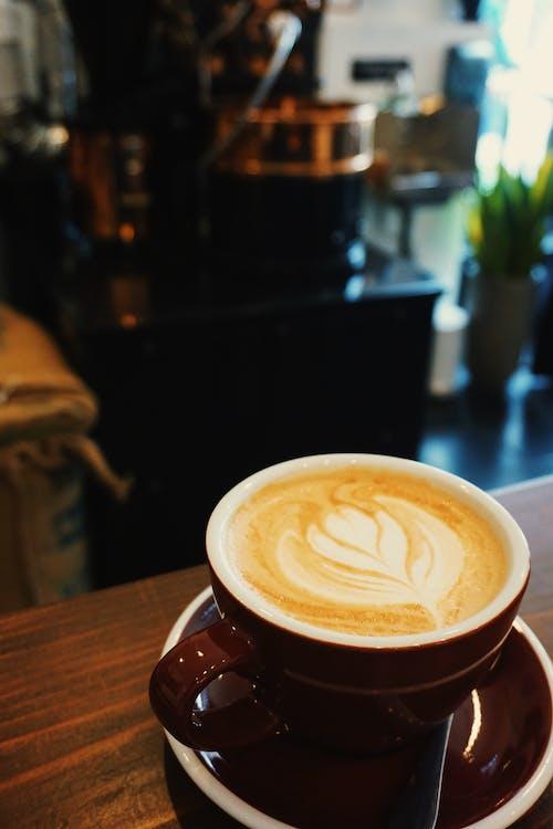 Immagine gratuita di caffetteria, chicago, città, latte art