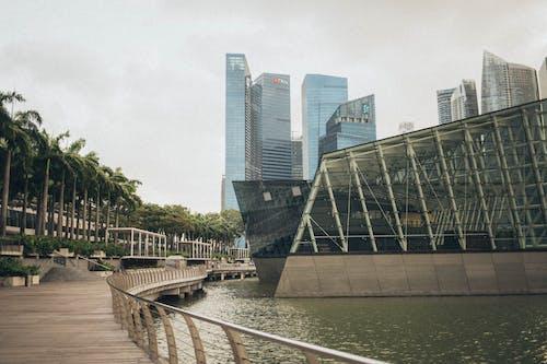 Gratis stockfoto met architectuur, binnenstad, bomen, brug