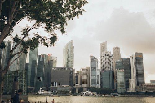 คลังภาพถ่ายฟรี ของ กลางวัน, การเงิน, ตัวเมือง, ตึก