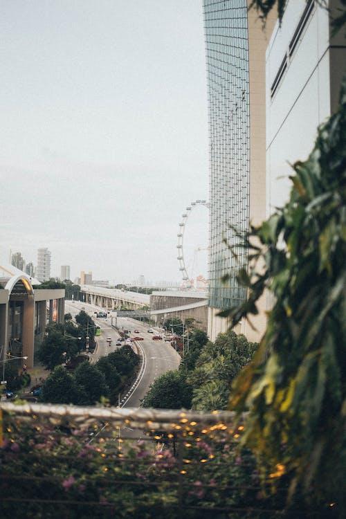 Gratis stockfoto met architectuur, binnenstad, boom, bouw