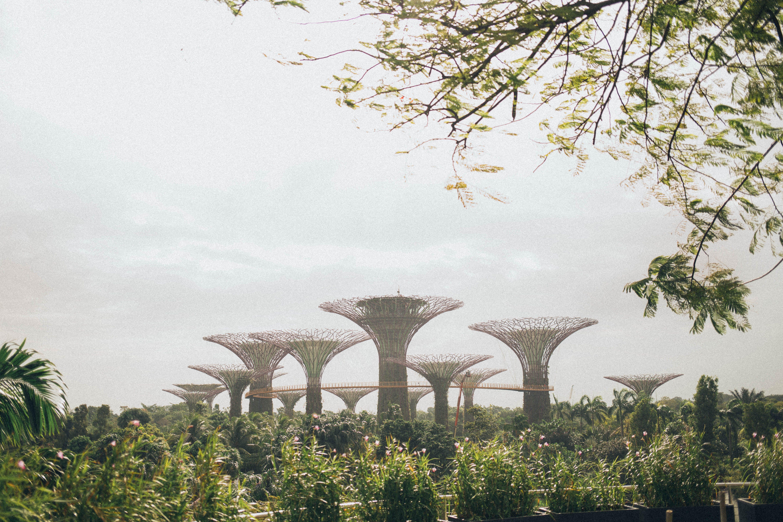 건물, 건축, 경치, 공원의 무료 스톡 사진