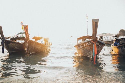 ウォータークラフト, ボート, 交通機関, 日光の無料の写真素材