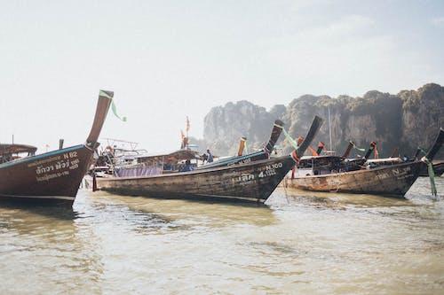 Foto d'estoc gratuïta de aigua, badia, barques, barques de pesca