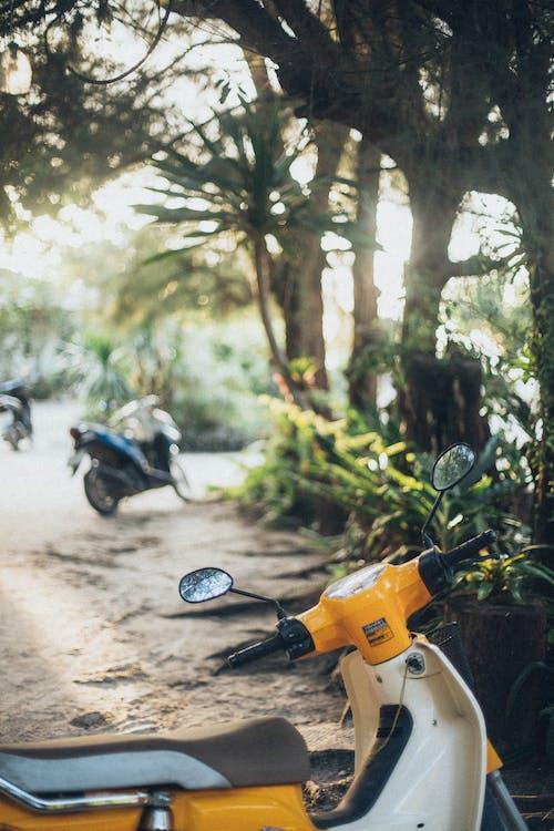 Fotos de stock gratuitas de aparcado, escúter, moto, motocicleta