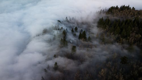 Free stock photo of clouds, dji, Foggy landscape, foggy morning